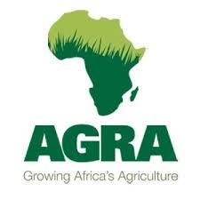 Job Opportunity at Officer AGRA, Grants Officer