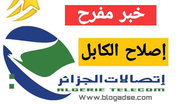 إصلاح كابل الانترنت الذي يربط بين الجزائر و مرسيليا
