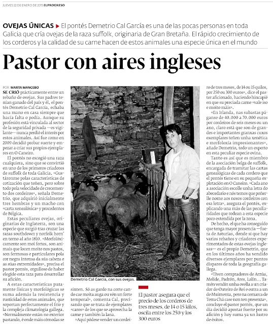 Pastor con aires ingleses