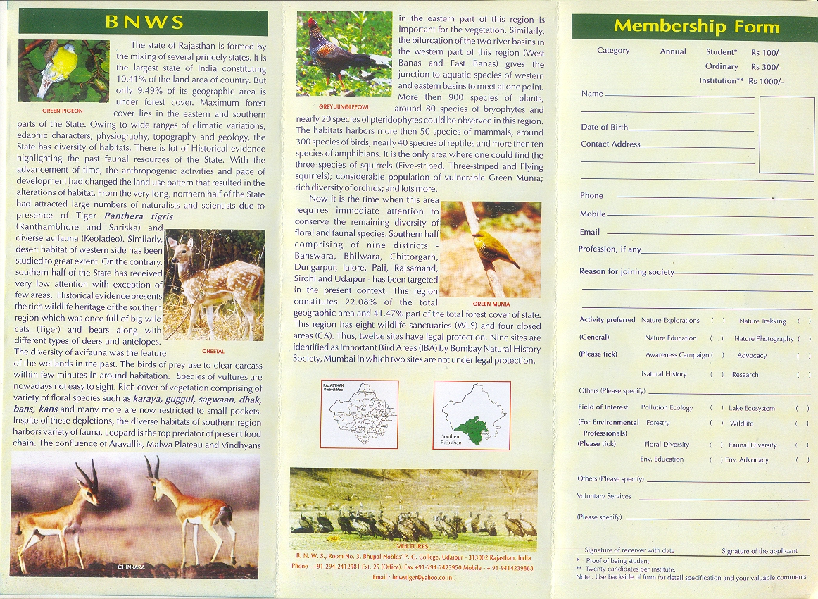 Travel Brochure Examples For Animal Cell