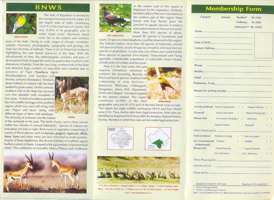 Plant Cell Amusement Park Brochure