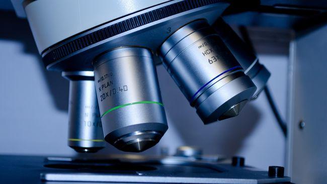 Universitas Oxford Siap Uji Lanjut Vaksin Corona ke Manusia