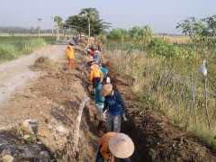 Pemerintah Desa Rowobranten Laksanakan Program Padat Karya Tunai (PKT)
