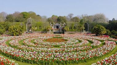 Arundel Castle & Gardens, una visita virtual de primavera