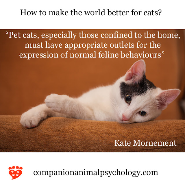 A better world for cats - they need outlets for the expression of normal feline behaviours