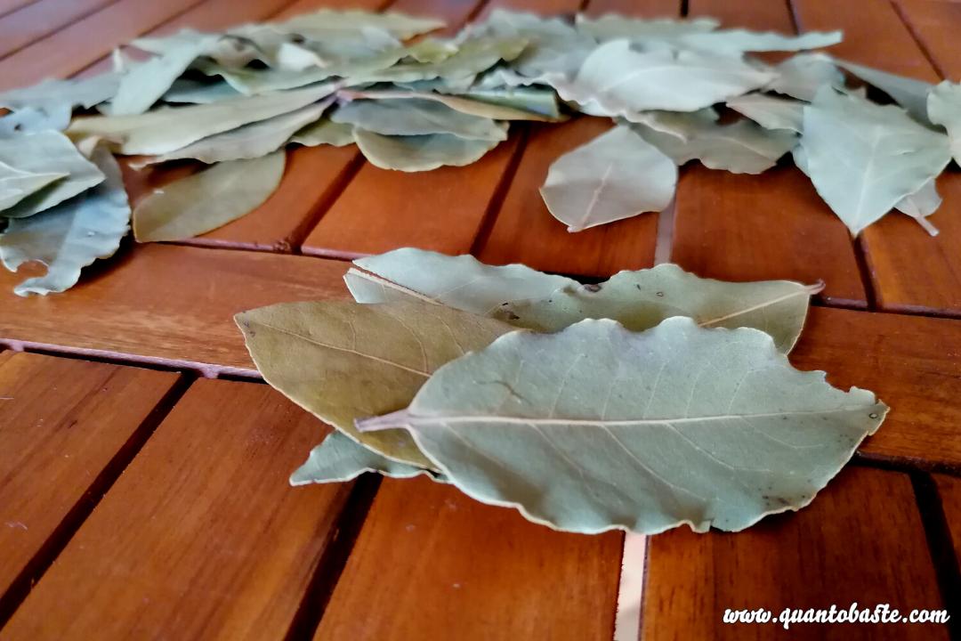 Benefícios das Folhas de Louro