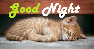 cute good night images hd download