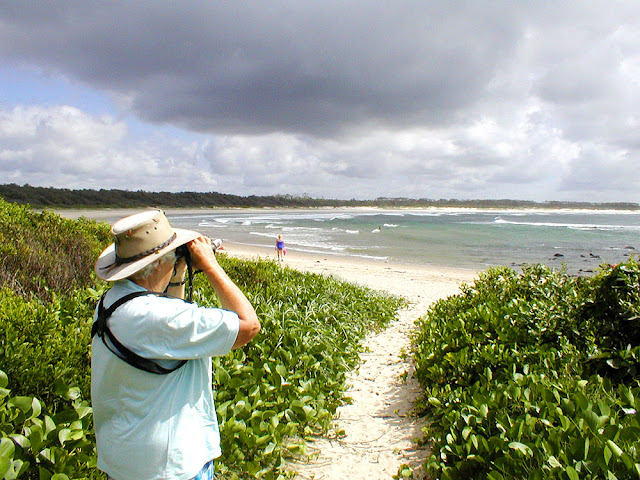 Birdwatching on the beach, Iluka, New South Wales, Australia. Photo by Loire Valley Time Travel.