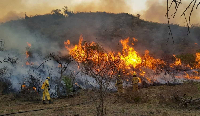 Comisión discute esta tarde proyecto para proteger terrenos de incendios intencionales