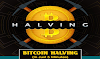 Bitcoin Halving: Definitive Guide (In Just 5 Minutes) #infographic