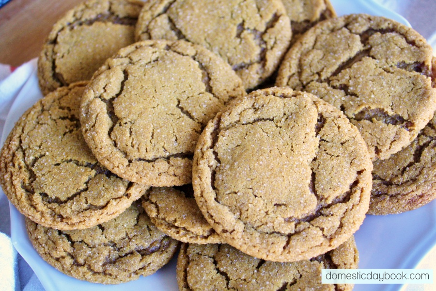 soft and chewy oahu gingersnaps