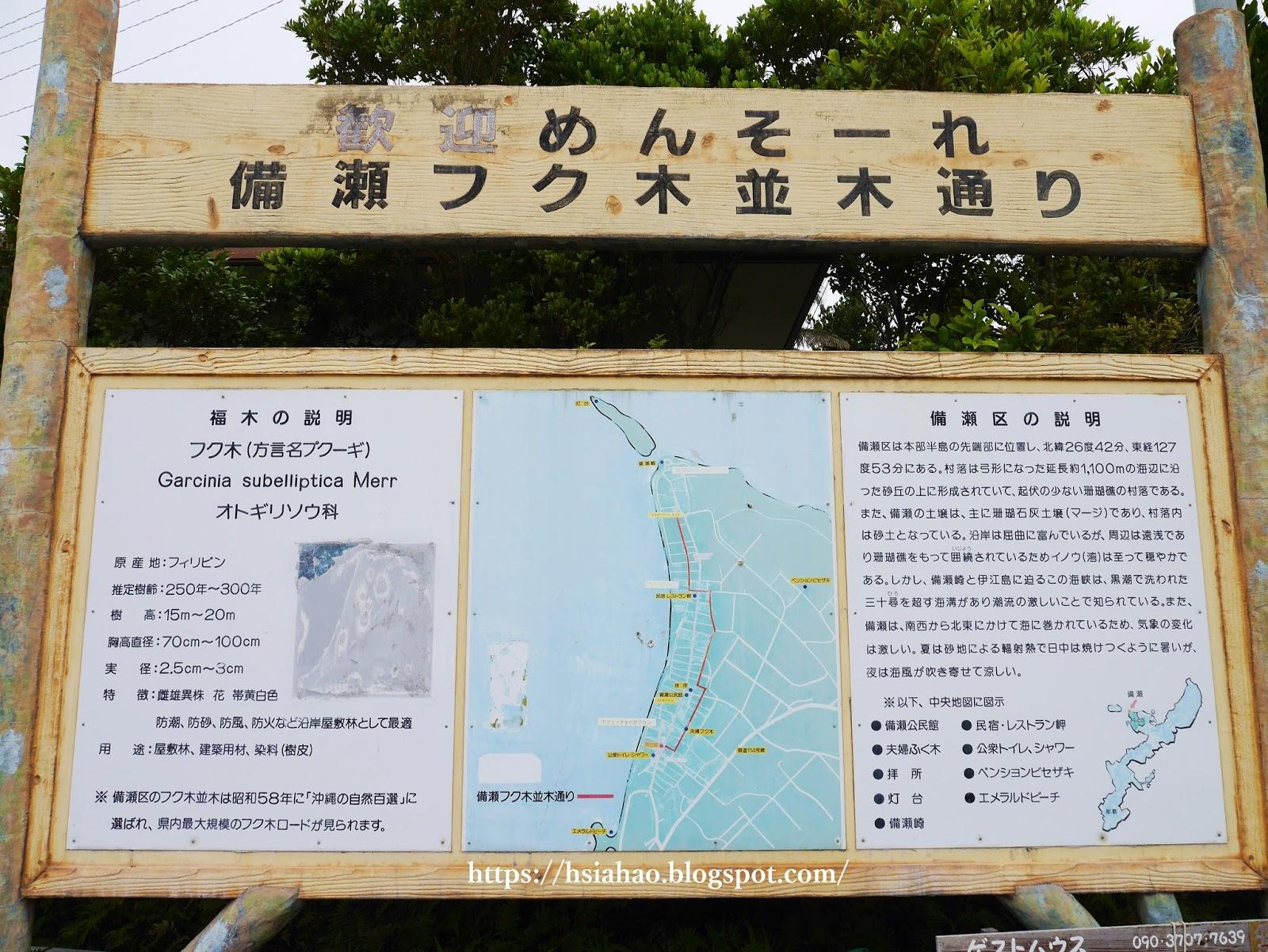 沖繩-海洋博公園-備瀨福木林道-備瀬フク木並木通り-景點-自由行-旅遊-旅行-okinawa-ocean-expo-park-Churaumi