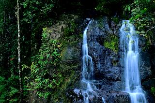 Top of the Falls - Rio Viejo