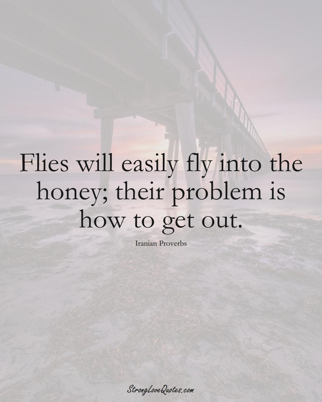 Flies will easily fly into the honey; their problem is how to get out. (Iranian Sayings);  #MiddleEasternSayings