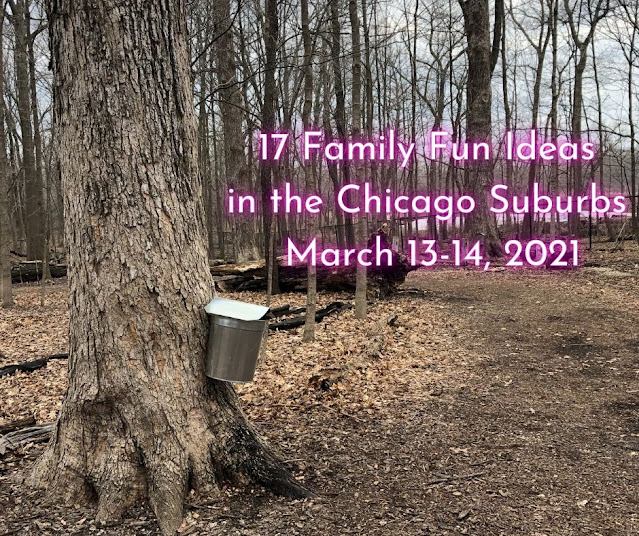 17 Family Fun Ideas in the Chicago Suburbs March 13-14, 2021