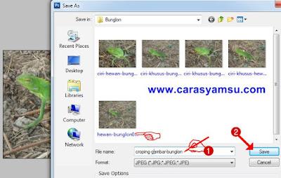 Cara memberi nama file pada file foto hasil croping