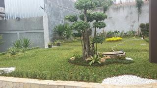 Tukang Taman di Kemang,Jasa Pembuat Taman di Kemang,Jasa Renovasi Taman di Kemang,Jasa Pembuat Taman Minimalis di Kemang