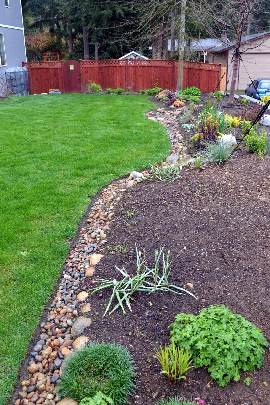 The Outlaw Gardener: Alison Conliffe's Garden