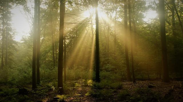 natuur en geloof