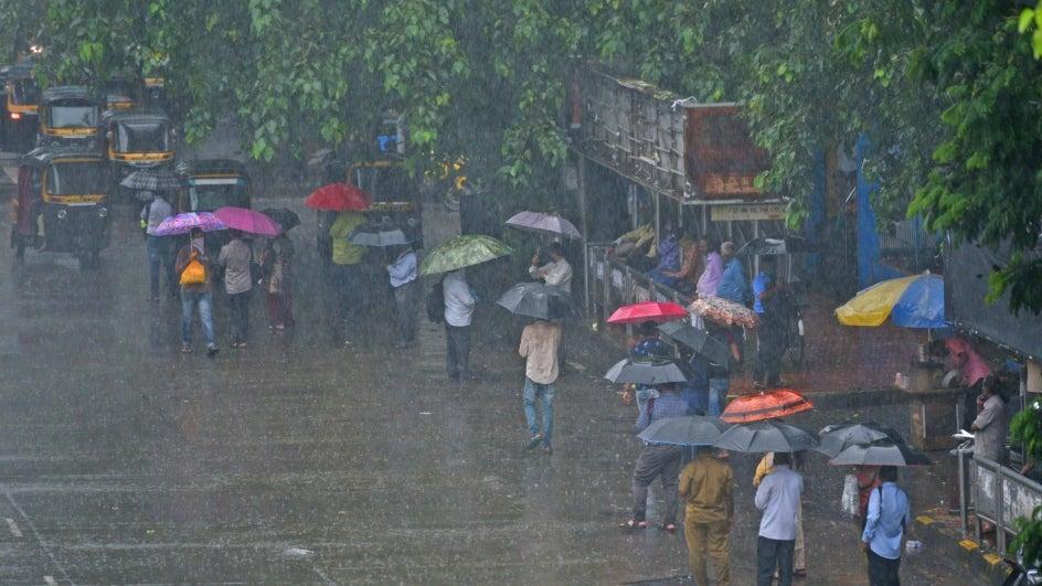 ગુજરાતમાં સાર્વત્રિક વરસાદ