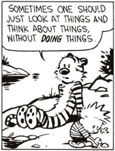 The Wisdom Of Calvin...