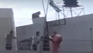 Έλληνες μαθητές μπήκαν στο ΤΕΙ Κρήτης και έκαψαν σημαία. ΒΙΝΤΕΟ ΝΤΟΚΟΥΜΕΝΤΟ