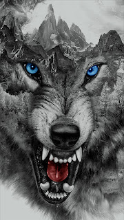 Angry Wolf Mobile HD Wallpaper