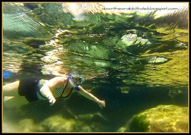 things to do in Akumal Mexico, snorkeling in Akumal, snorkeling in Mexico
