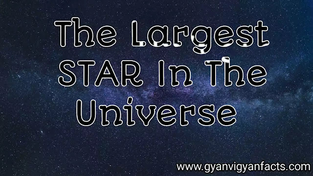 the-biggest-suns-in-the-universe