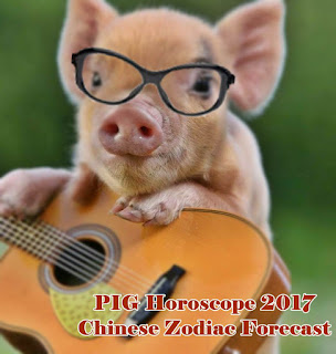 PIG Horoscope 2017 Chinese Zodiac Forecast
