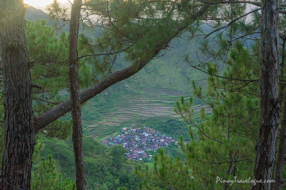 View form Mt. Kupapey, a community within Maligcong Rice Terraces