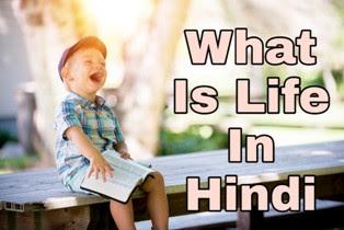 क्या आप जानते है की जीवन क्या है। What Is Life In Hindi
