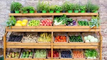 As 8 vitaminas e minerais essenciais para o seu corpo