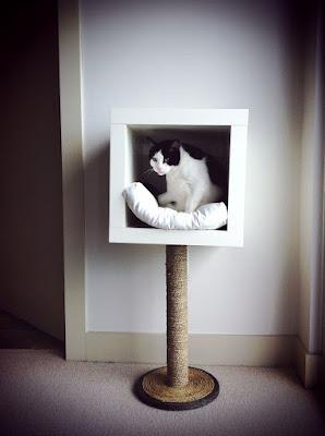 Cama árbol para gatos con rascador