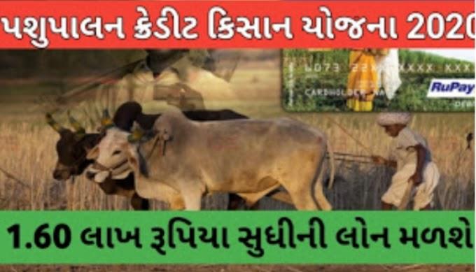 Loan up to Rs. 1.60 lakh under Animal Husbandry Kisan Credit Scheme
