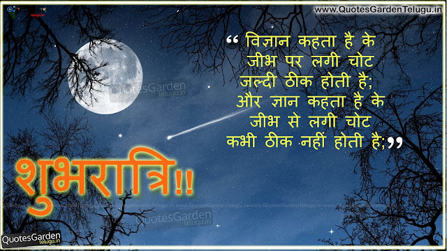 Best Hindi Good night Shayari Greetings