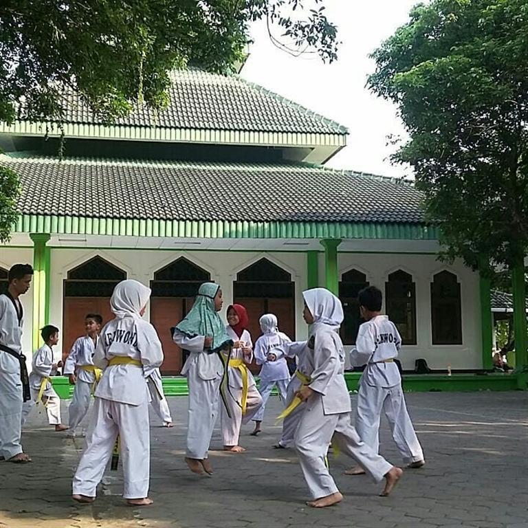 Dokumentasi Latihan Taekwondo