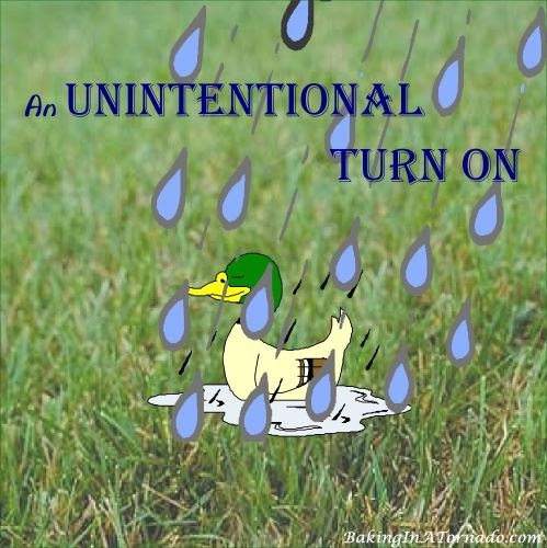 An Unintentional Turn On | graphic designed by and property of www.BakingInATornado.com | #MyGraphics #humor