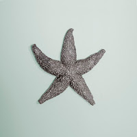https://www.ceramicwalldecor.com/p/starfish-reverse-pewter-wall-decor.html