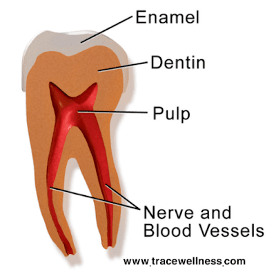 How to know if a tooth is dead