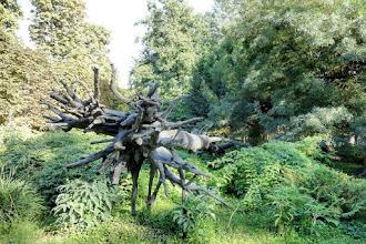 Paris : L'Arbre des Voyelles, une oeuvre de Giuseppe Penone - Jardin des Tuileries - Ier