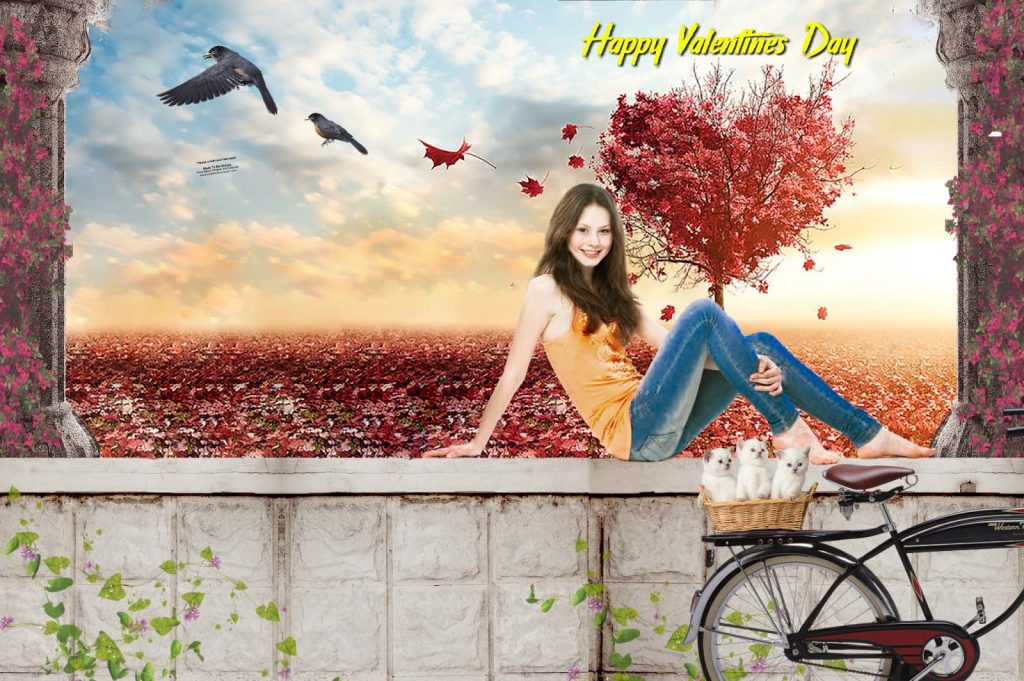 Happy Valentines Day Background For Editing