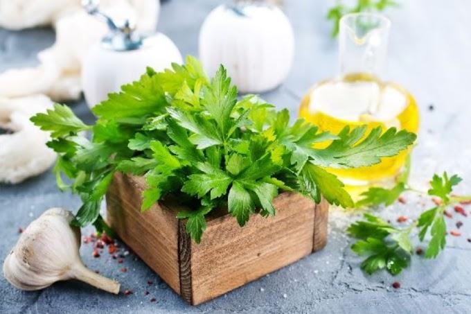 Magas a vérnyomása? Ezeket a gyógynövényeket és fűszereket fogyassza!