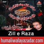 http://www.humaliwalayazadar.com/2015/06/zille-raza-nohay-2016.html
