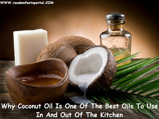 Why Coconut Oil Is One Of The Best Oils To Use In And Out Of The Kitchen