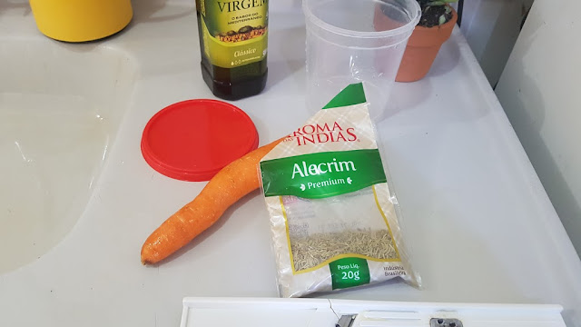 alecrim, cenoura e vinagre para fazer oleo