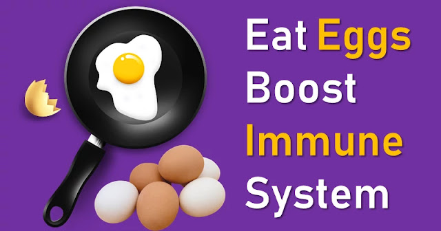 Eat eggs to boost your immune system