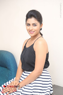 Telugu Actress Kruthika Jayakumar Stills in Short Dress at Intlo Deyyam Nakem Bhayam Success Meet  0203.JPG
