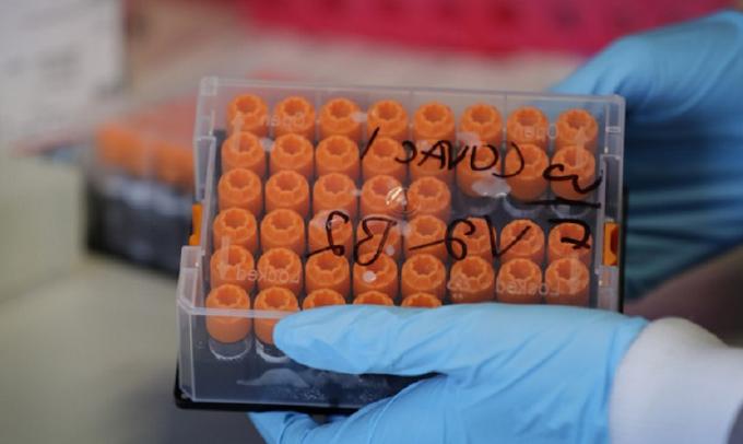 Coronavirus, 16.974 nuovi contagiati, 380 morti