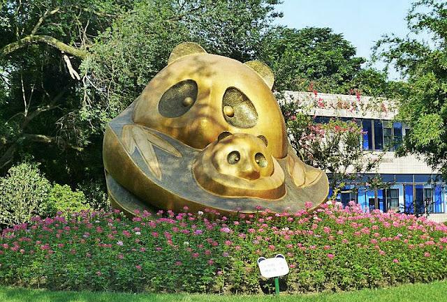 centro ricerca panda chengdu cina